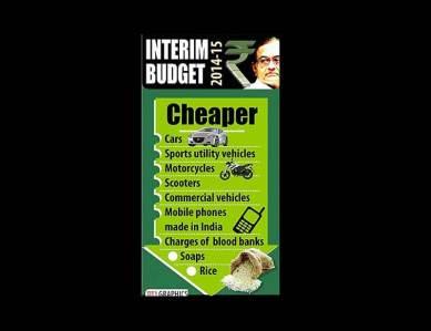 Chidambram 20142015 interim budget