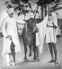 Gandhi - India